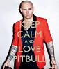 pitbull-505468.png
