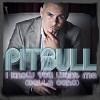 pitbull-60771.jpg