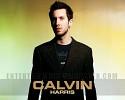calvin-harris-455038.jpg