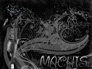machis-326236.jpg