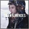 shawn-mendes-606949.jpg