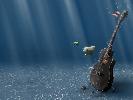 musicguy-1215431.jpg