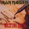 iron-maiden-492647.jpg
