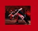 tango-308803.png