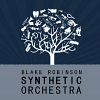 the-blake-robinson-synthetic-orchestra-585592.png