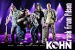kohn-587910.jpg